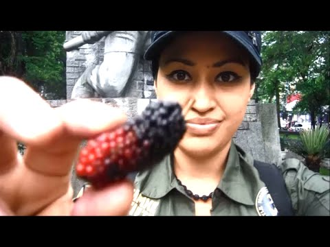 Vanity Travel Vlog: The Ho Chi Minh Museum & Mausoleum, Cool Communist Art & A Mummified Corpse!
