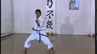 Tekki Nidan - Efthimios Karamitsos - Karate - Kata - Shotokan