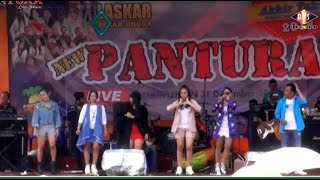 Live WONOSOBO New PANTURA