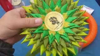 Выставка собак Старый оскол 09 09 18 АВРОРА ЛИСА И ДР СТАФФЫ