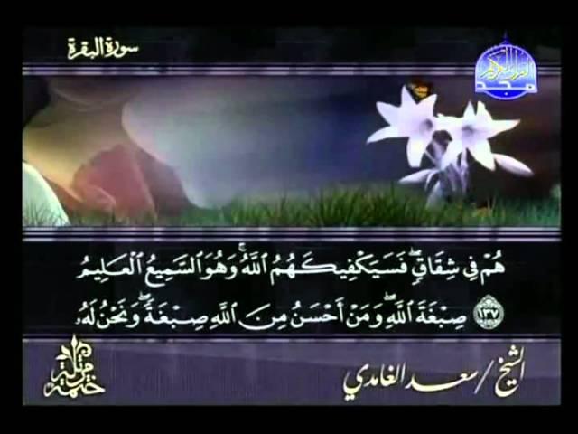 Syeikh Sa'ad bin Sa'id al - Ghamidi