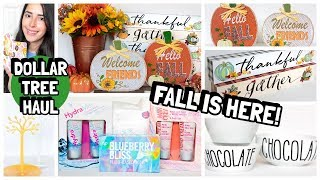DOLLAR TREE HAUL NEW FALL ITEMS NEW FINDS JULY 2019