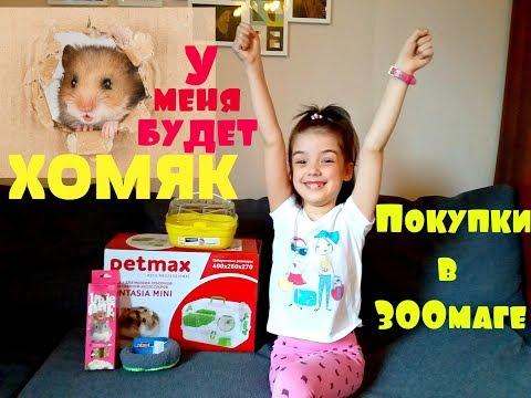 У МЕНЯ БУДЕТ ХОМЯК! Покупки из зоомагазина/ Что нужно для хомяка/ hamster// Good toys