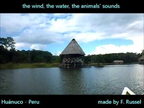 Peruvian attractions - The miracle's lake ( In the jungle )
