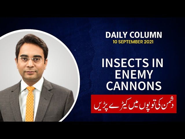 Insects in enemy cannons | Daily Column | Asad ullah khan | 9 News HD