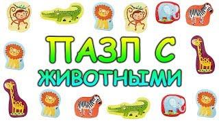 Пазл с животными Обучающее видео Для детей