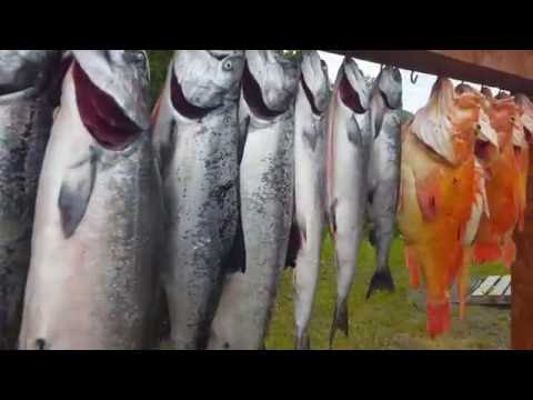 Kodiak Island, Alaska.  Fishing King Salmon- Halibut- Yelloweye- Black Bass