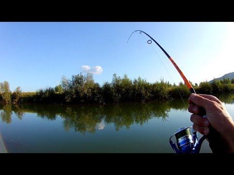 Рыбалка на ЩУКУ. Ловля щуки на р. Тиса.