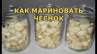 Рецепт маринованного чеснока