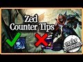 How Zed Works (Under 2 Minutes)