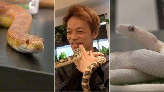 "Visiting Tokyo's first permanent ""snake cafe,"" Tokyo Snake Center"