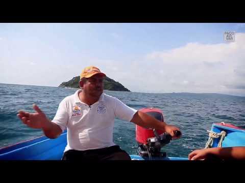 Yelapa, qué hacer en la playa Las Ánimasиз YouTube · Длительность: 13 мин34 с