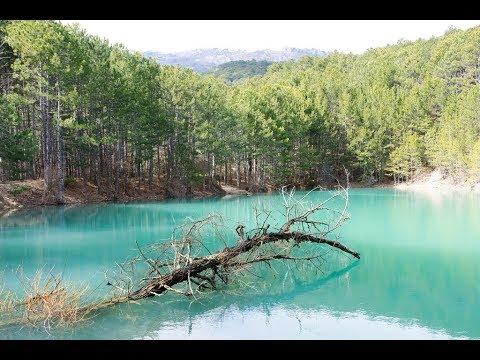 Гаспра. Заповедный лес, бирюзовое озеро, родник Загмата, DH Ягодка. 21 Марта Ялта Крым