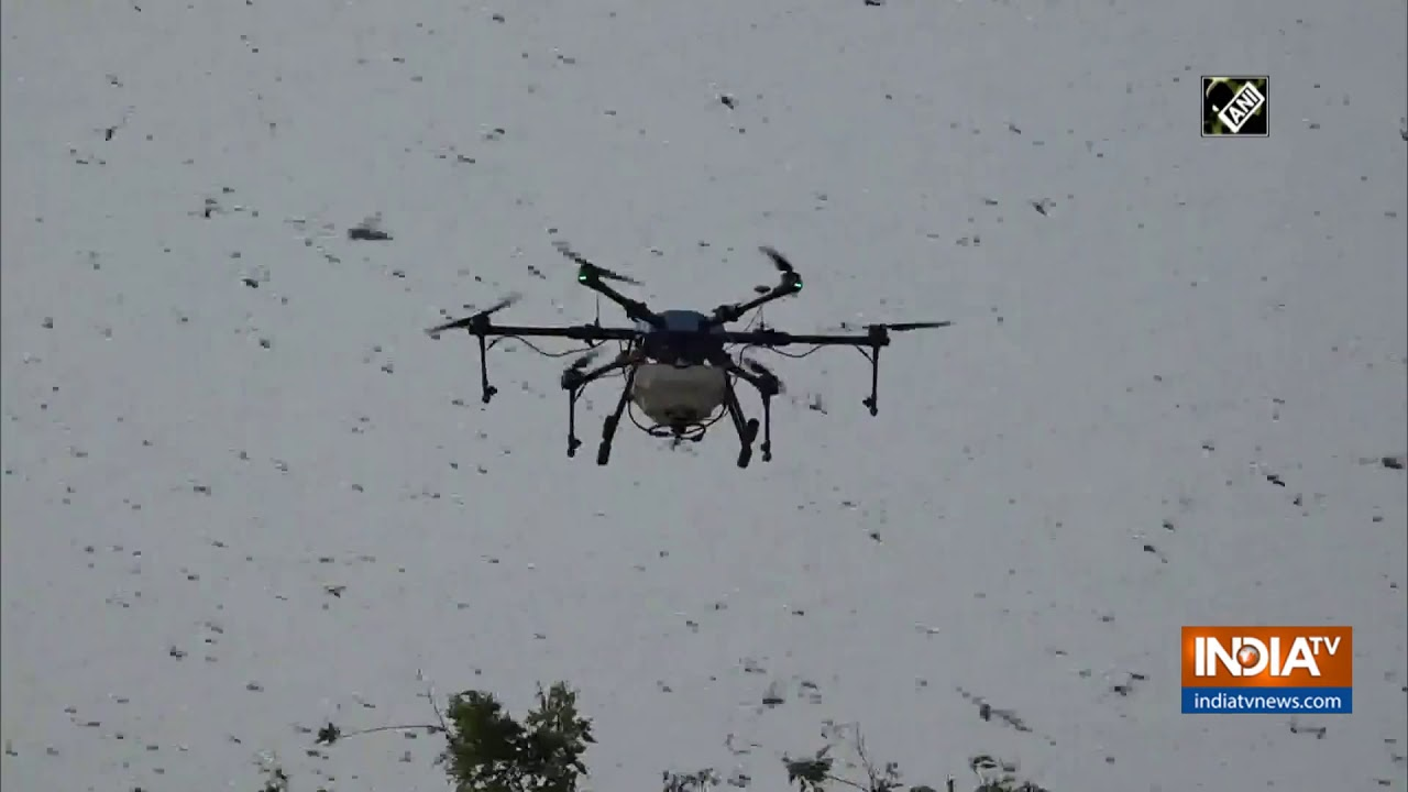 Watch: Agriculture dept uses drones to spray insecticides on locusts` swarms in Agra