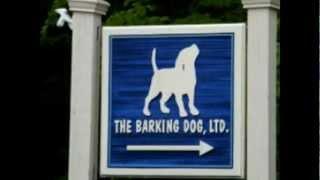 The Barking Dog!