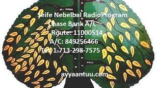 Seife Nebelbal Radio Interviews Artist Abebe Kefani