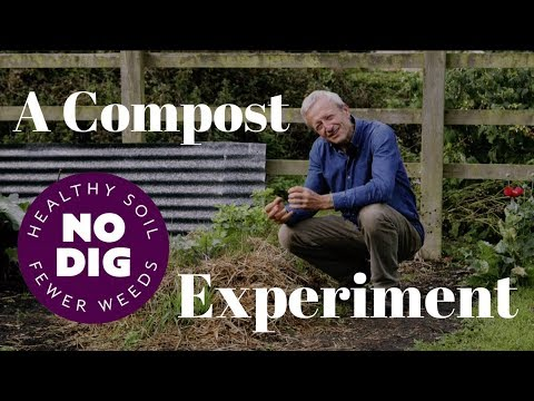 Discover The Problems When You Plant In Fresh Manure Rather Than Compost