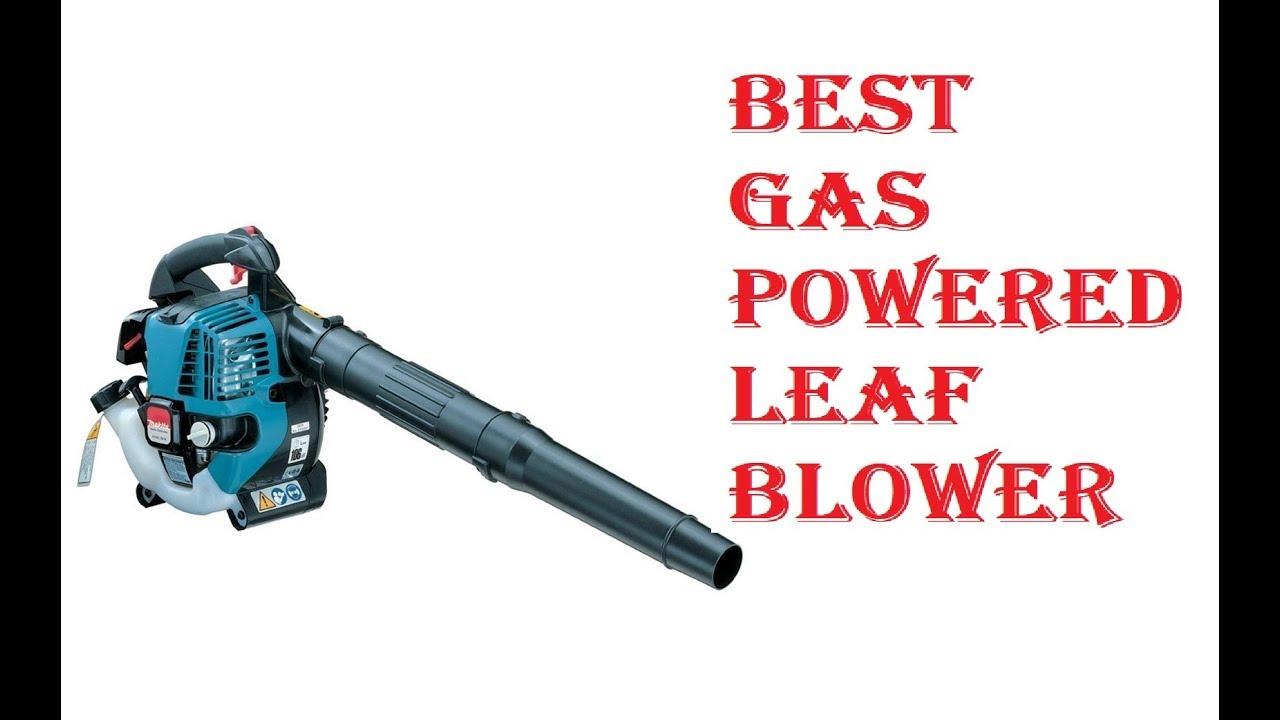 Best Gas Leaf Blower 2019 Best Gas Powered Leaf Blower 2019   YouTube
