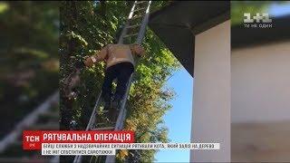 У Могилеві-Подільському наздвичайники провели спецоперацію з порятунку кота