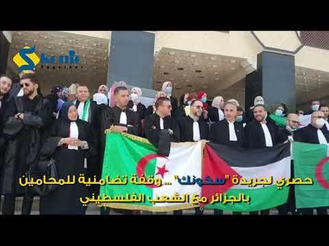 """الجزائر.. محامون في وقفة احتجاجية ل""""نصرة الشعب الفلسطيني"""""""