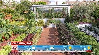 Виставка садів у Лондоні зібрала шанувальників ландшафтного дизайну з усієї Європи