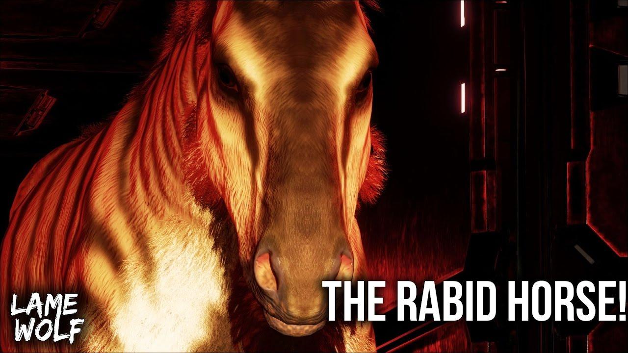 BEWARE THE RABID EQUUS! - THE EQUUS TRIALS (Ep.1) Ark ...