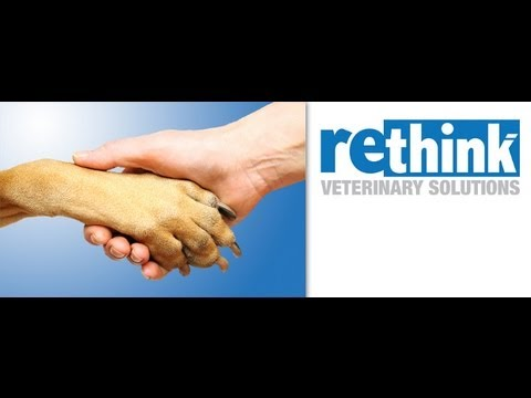 Review of Rethink Veterinary Solutions from Animal Hospital Huntington Beach
