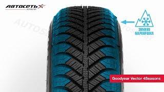 Обзор всесезонной шины Goodyear Vector 4Seasons ● Автосеть ●