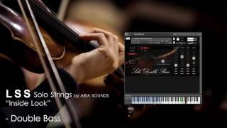 lss solo strings double bass inside demo
