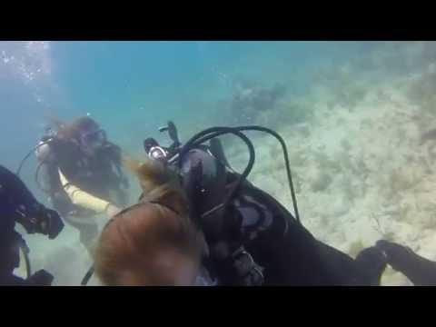 Sand Key 18 June 2015