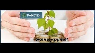 Инвестиции в Пандекс! Работа в интернете!