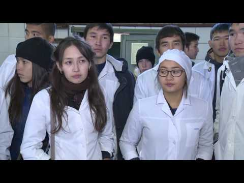 New opportunities, new perceptions: a wage subsidy programme for young job seekers in Kalmykia