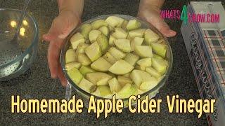 Homemade Apple Cider Vinegar - Make Real, Healthy Apple Cider Vinegar at Home!!!
