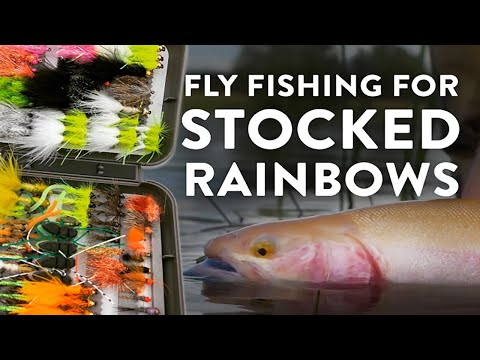 FLYFISHING IN For Stocked Rainbow Trout - Danish Troutlake (GUIDE)