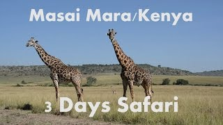 3 Days Safari in Masai Mara/Kenya