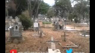 Inspección en Cementerios Municipales de Palavecino