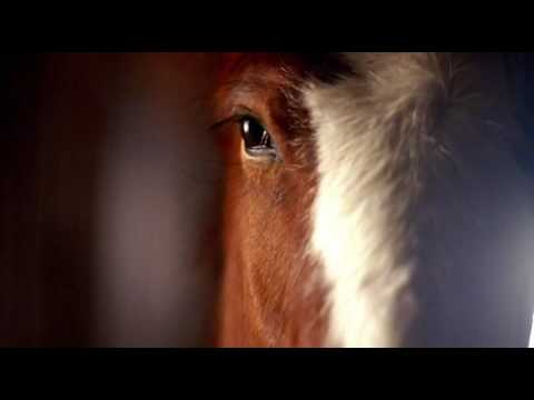Bud light breathe fire commercial youtube budweiser clydesdale commercial 2006 super bowl aloadofball Choice Image
