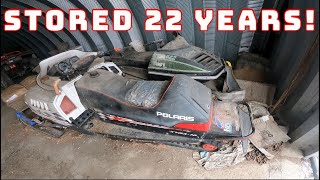 VINTAGE Polaris AND Arctic Cat Snowmobiles - Will They Run? (WITH MILLENNIAL FARMER!)