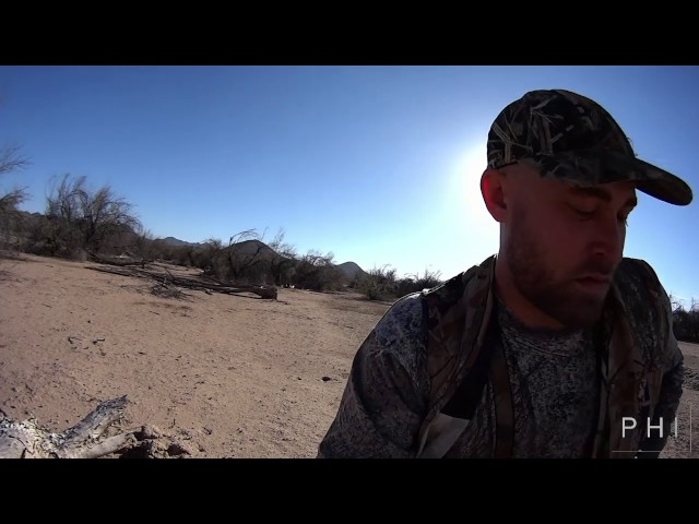 dove cook yuma a dove hunters paradise sporter tv all about sport