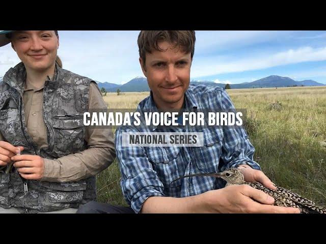 Episode #4: Bird Studies Canada Voice for Birds