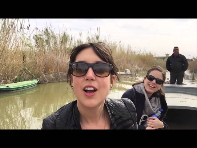 Albufera lagoon and natural park tours - Tours in Valencia