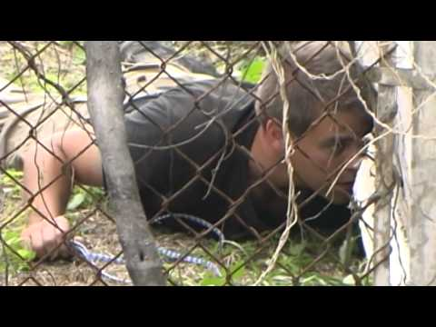 RAW* Rescuing Dogs Under Houses on the Streets in Post Hurricane Katrina New Orleans