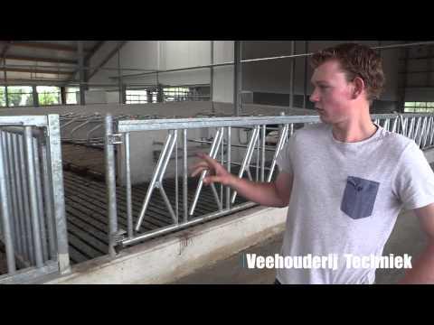 Stalbezoek Kraaijenbrink Heerde