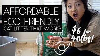 AFFORDABLE ECO FRIENDLY CAT LITTER | SVEN & ROBBIE