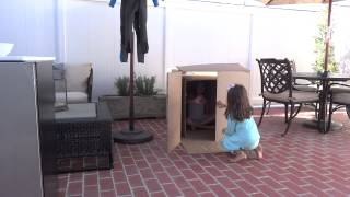 Magic Trick - Disappearing Girl in Box