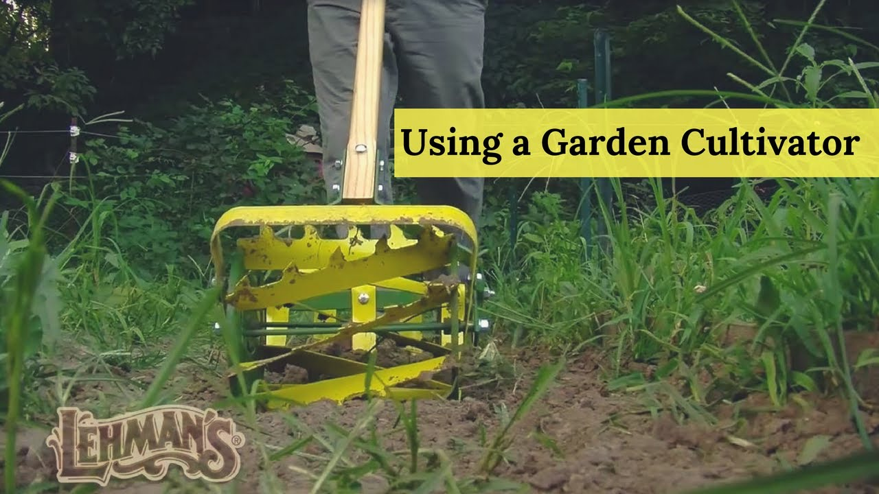 Using A Garden Cultivator Youtube