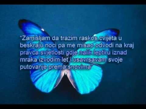 indexi-leptiru-moj-kmemo