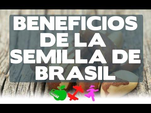 Beneficios de la semilla de Brasil /DGS/ Rocio