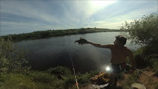 Рыбалка на р Луга Щука монстр Китайская живцовая снасть