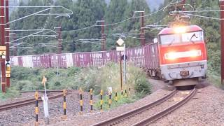 疋田カーブを行く EF510 ー19 牽引 貨物列車